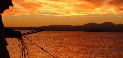 Gestione della pesca sportiva e professionale