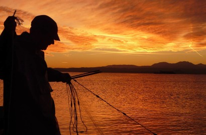 Management of sport fishing or professional fishing