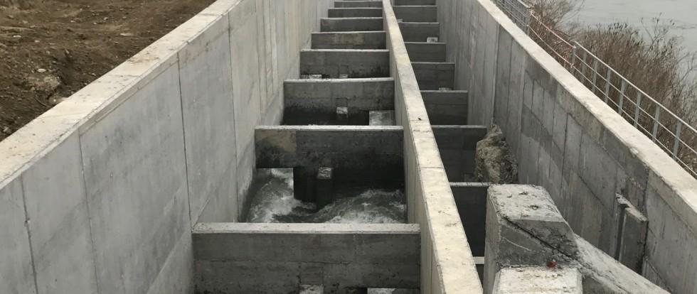 Il 17 marzo a Isola Serafini riapre ufficialmente la via migratoria dei pesci sul Fiume Po