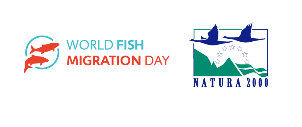 World Fish Migration Day e European Natura 2000 day